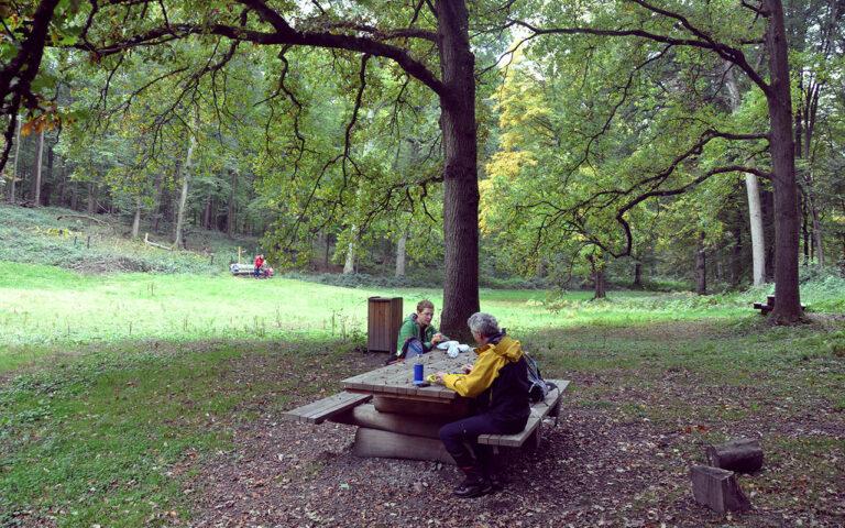 Picknick tafels vind je overal