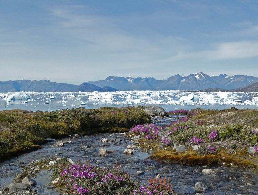 Sermilik fjord