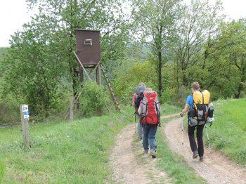 Meerdaagse trekkings België