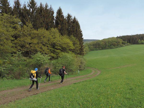 trekkings2